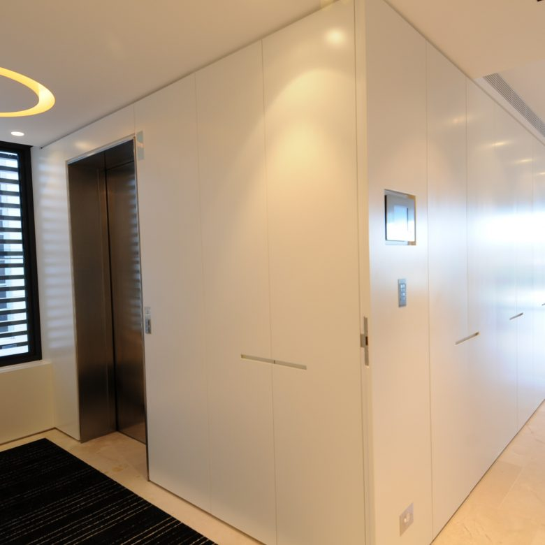 Custom made Entrance door and wall paneling